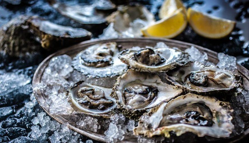 oysters in private villa rent croatia